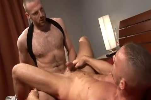 tim and friends2