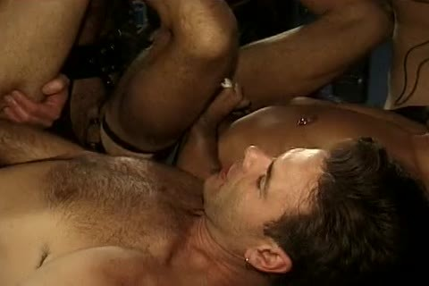 hairy messy Raunchy Pigs two