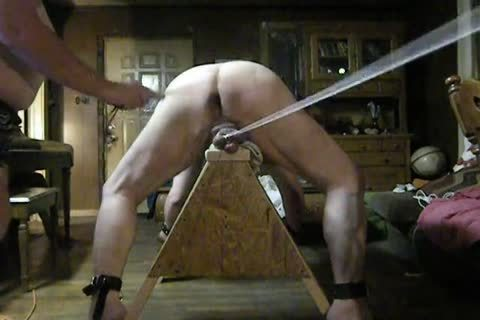 bulky Daddy receive fastened Up On His Sawhorse, Then Spanked And Balls Bashed.