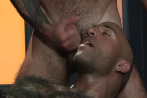 Muscle Bear trio And cumshot