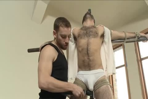 hirsute stud Is tied Up For The First Time And Edged