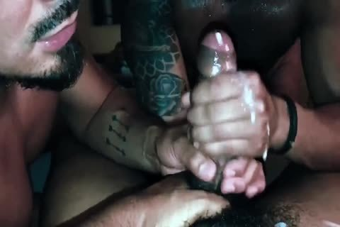 Latin boyz sucking black cock