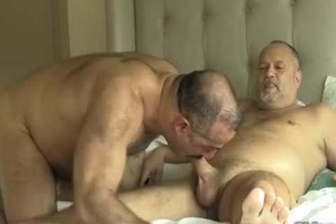 Two gorgeous Daddy Bears gay Sex