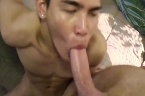 Smooth Little oriental plowed By coarse White Top