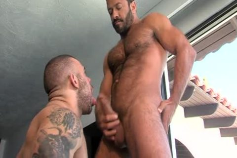Vinnie Stefano, Lorenzo Flexx And Dallas Steele (RE P3)