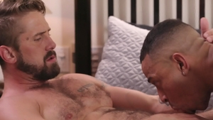 IconMale.com: Brown hair Zario Travezz blowjob cum in the bed