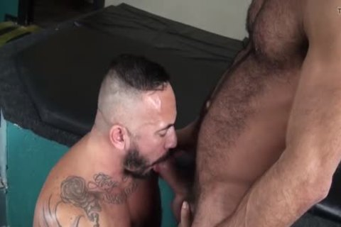 Alessio Romero And Vinnie Stefano (BOAR P4)